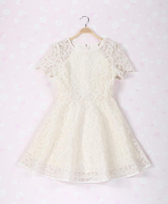 Short Sleeve Flowers Hollow Summer Vivi Lace Dress